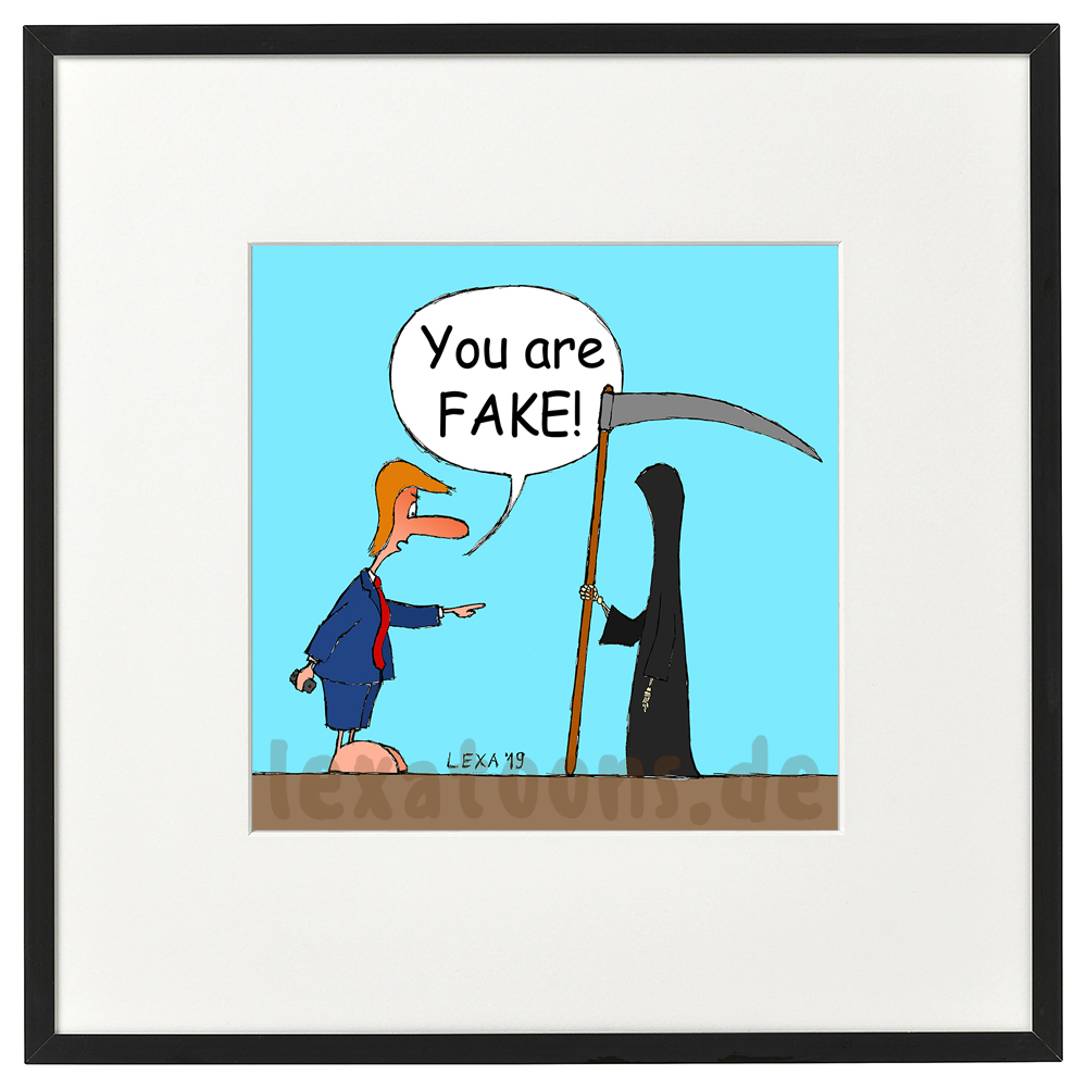 lexatoons-gerahmte-cartoons-you-are-fake